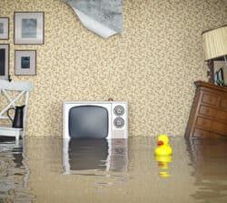 Ubezpieczenie mieszkania – gdzie szukać, jak wybrać iile tokosztuje?